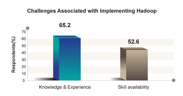 Advantages Of Hadoop Implementation, Hadoop Initiatives, Hadoop In Small And Big Organizations