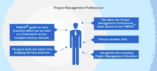 PMP Professionals