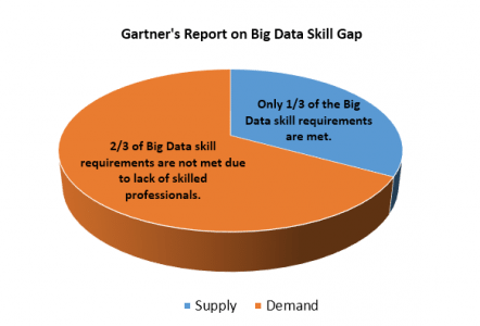 Big Data Skill Gap