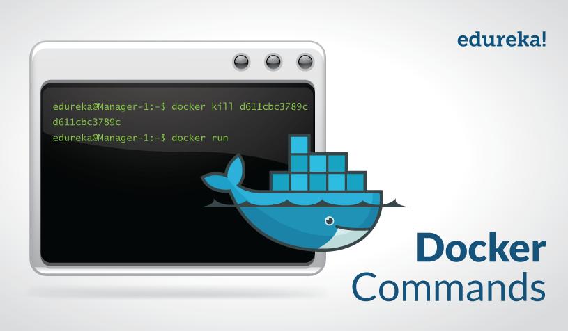 Docker Commands Tutorial | Top 15 Docker Commands | Edureka