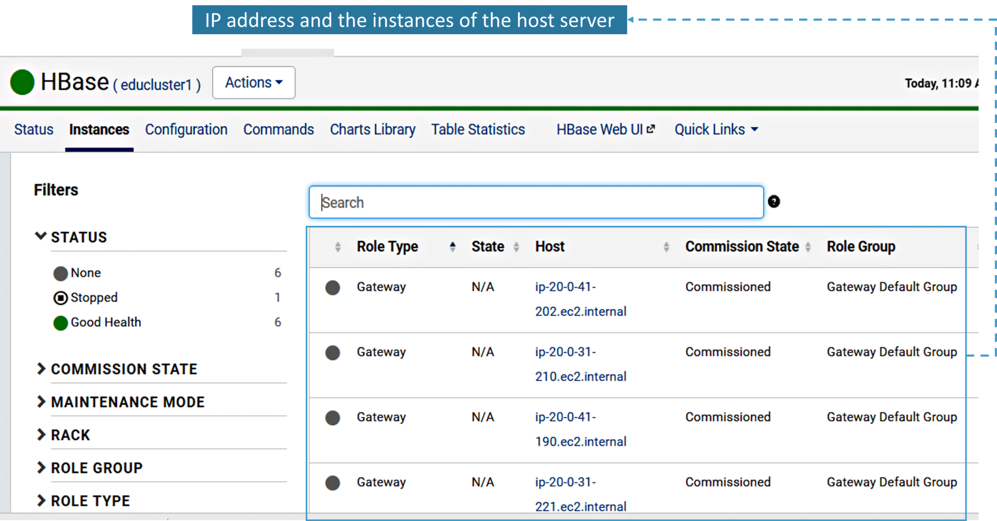 Fig: Status and IP address of the Host Server of the HBase cluster