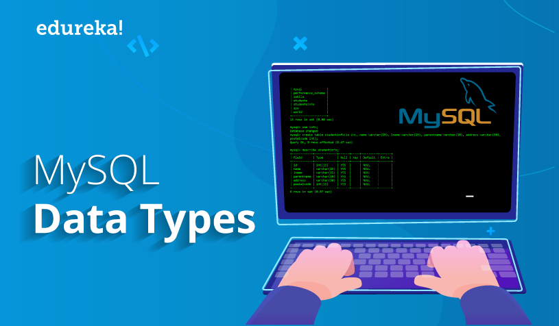 MySQL Data Types | Understanding Different Data Types In