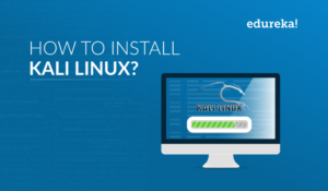 How To Install Kali Linux? All You Need To Know image