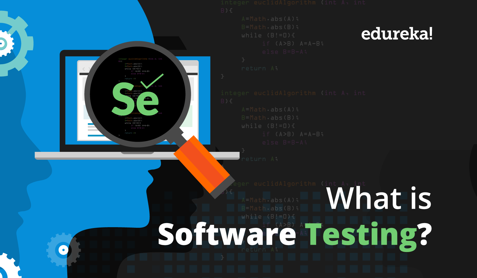 What is Software Testing? | Basics & Types of Testing