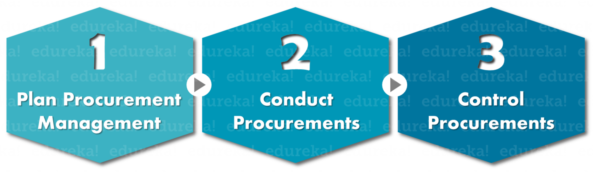 Processes - Project Procurement Management - Edureks