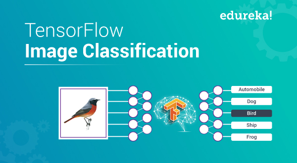 TensorFlow Image Classification | Build Your Own Classifier
