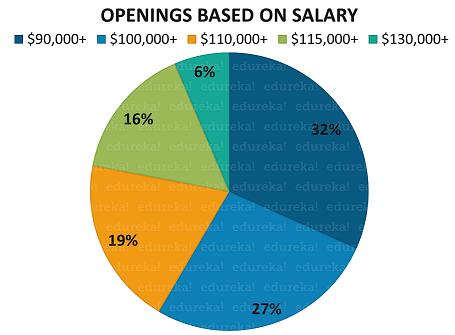 Java Developer Salary | Average Salary in India and US | Edureka