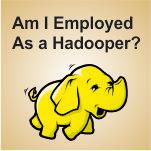 Hadoop certified professionals