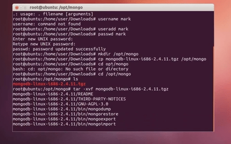 how to use mongodb in ubuntu